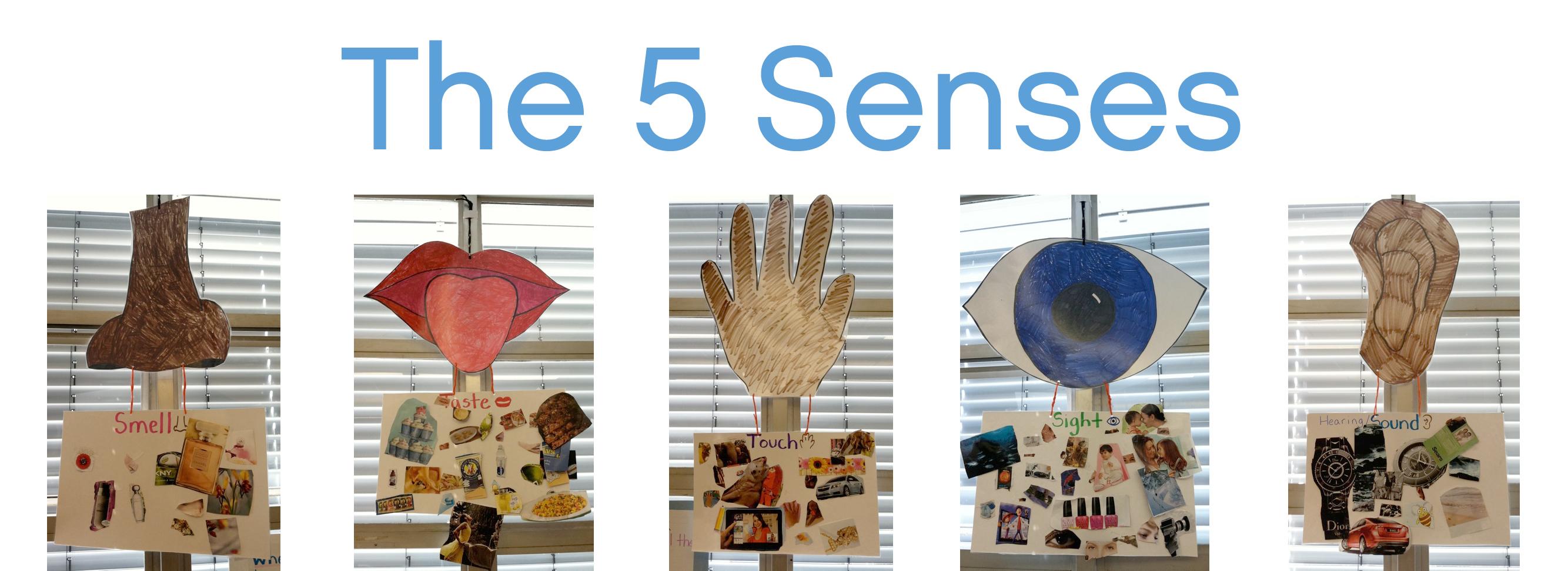 the5senses4 - 5 Senses Kindergarten
