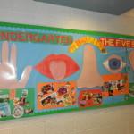 Kindergarten and The 5 Senses – Bulletin Board
