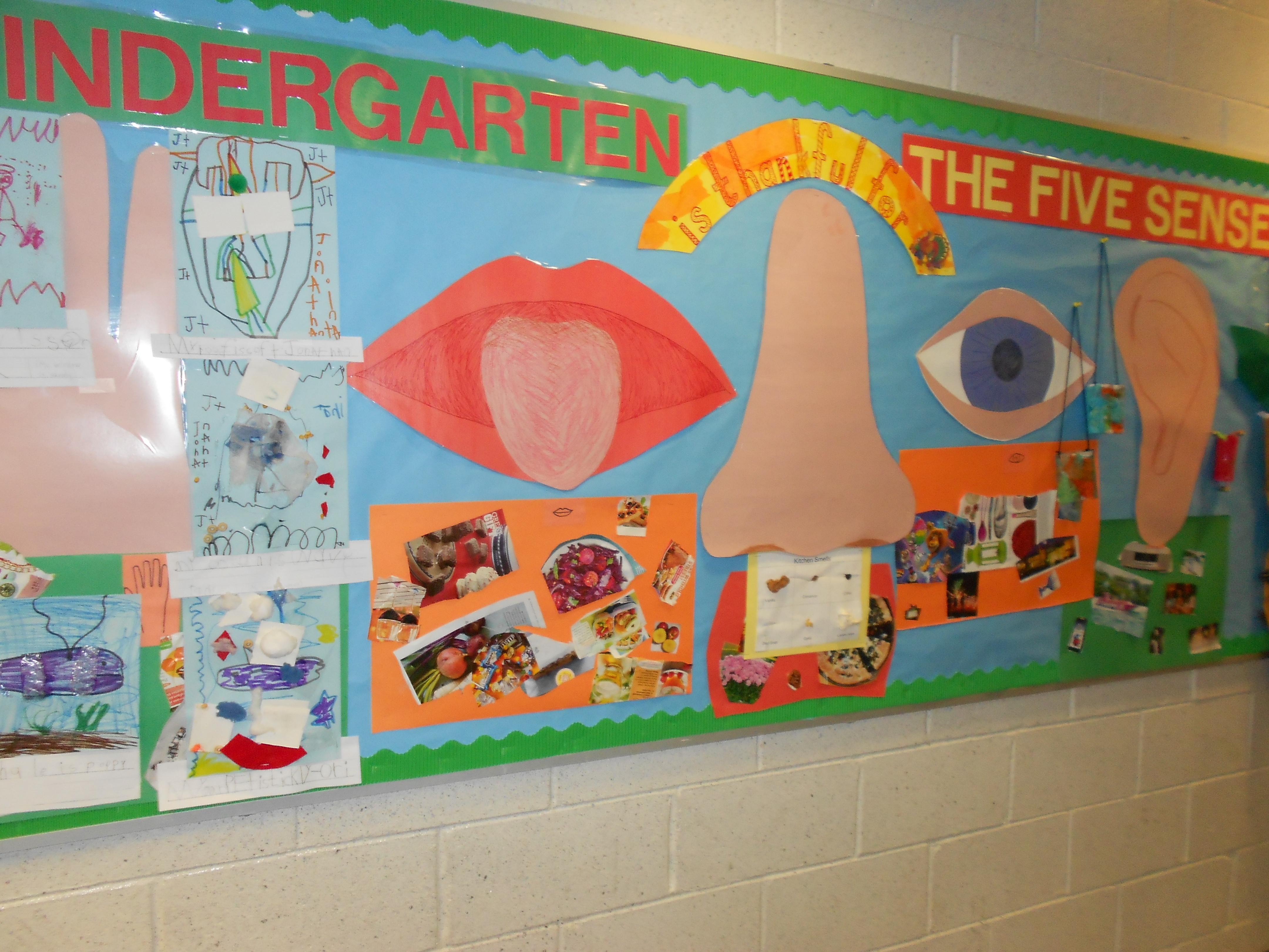 Classroom Mural Ideas ~ Kindergarten and the senses bulletin board meri cherry