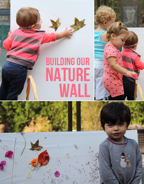 Build a Nature wall on a large canvas with contact paper