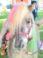 Horse and Pony 3 Year Old Birthday Party