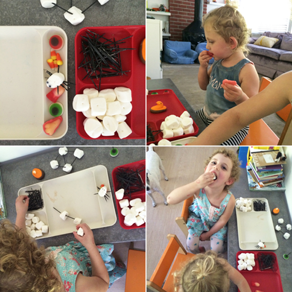 marshmallow and toothpick building - make a spiderweb