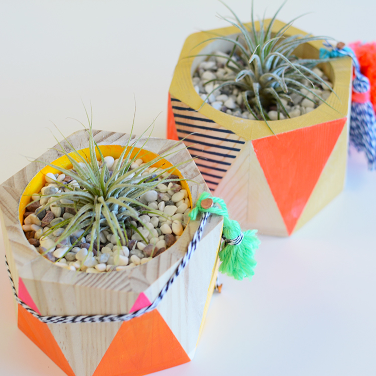 The perfect ladies craft night - make your own air plant wood planters