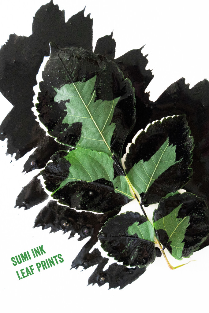 Sumi Ink Leaf Prints
